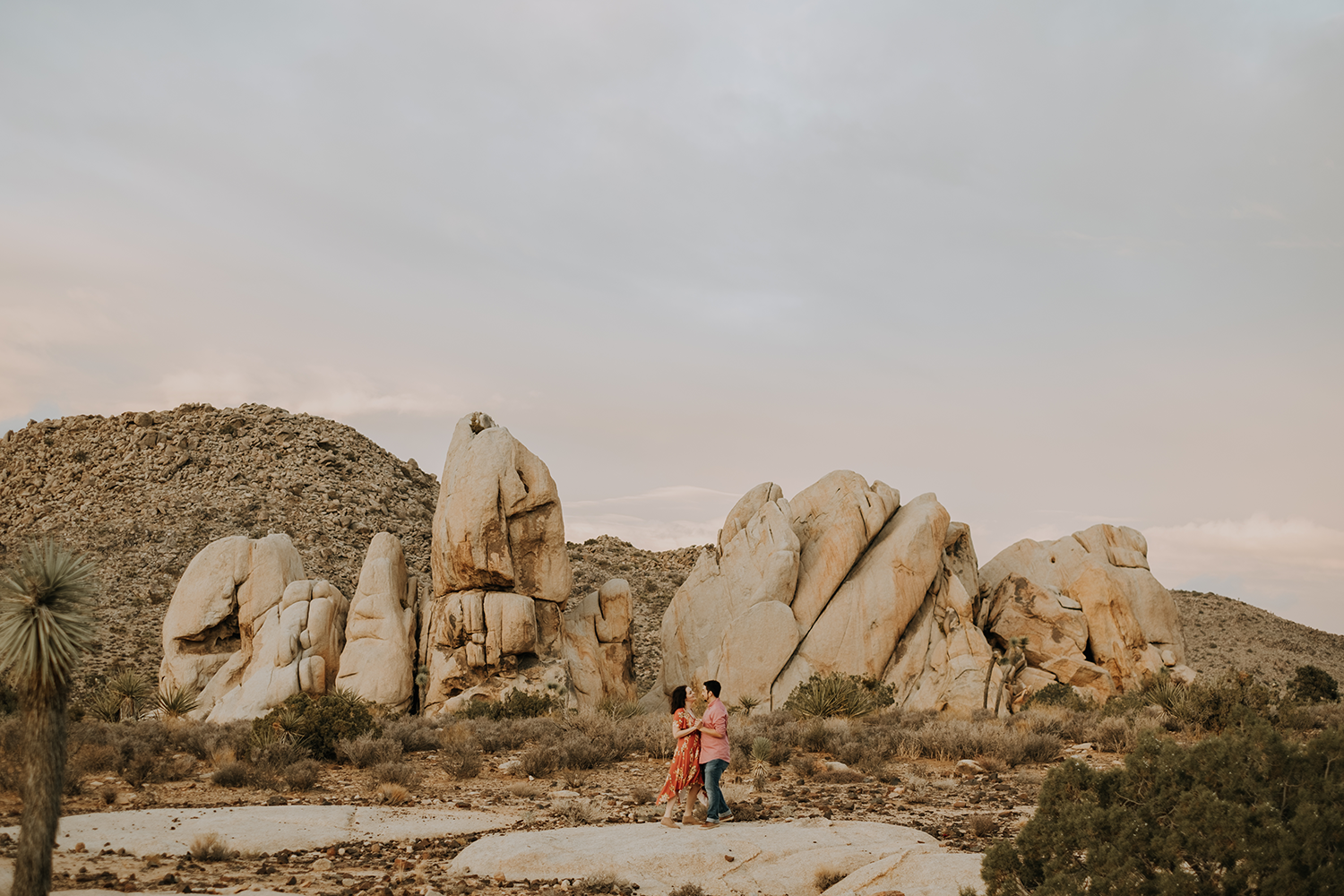 Joshua tree desert engagement